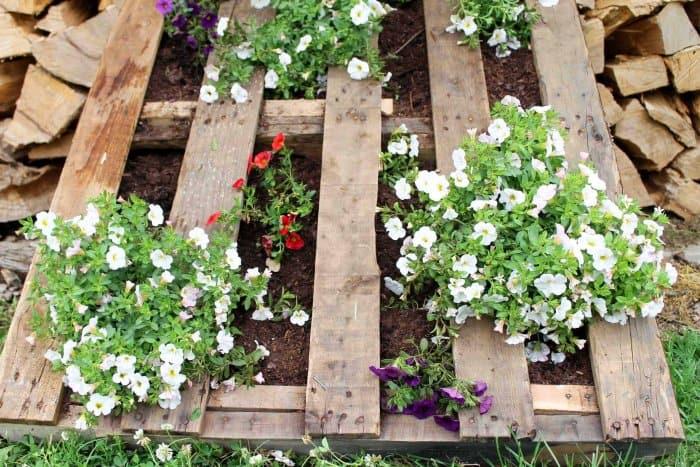 DIY Vertical Pallet Garden   Angie\'s List