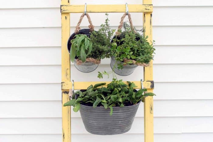 Add your favorite vegetables to your containers. (Photo courtesy of Angie Holden/The Country Chic Cottage)