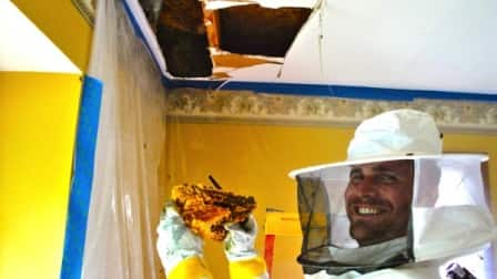 Beekeeper Ross Harding says he has a snake cam he can put in a small hole in the wall to help him locate where the bees are. (Photo courtesy of Ross Harding)