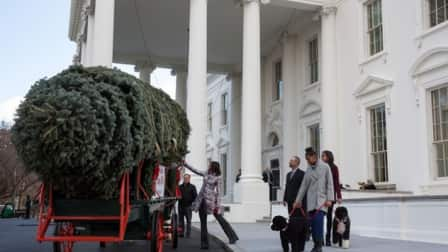 First Lady Michele Obama and daughter Sasha and Malia greet this year's official White House Christmas Tree, an 18-foot fir from Pennsylvania. (Photo courtesy of the White House)