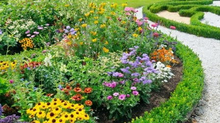 Edged flower bed with a variety of different color flowers next to a pebbled path.