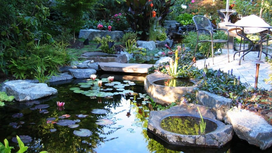 Fountains vs ponds comparing water features angie 39 s list for Koi pond maintenance near me