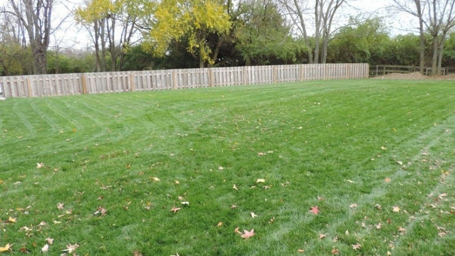 For top performance, you want the landscaping over your septic system to promote drainage and prevent erosion. Grass is ideal for this purpose. (Photo courtesy of Angie's List member Tracy F. of Dayton, Ohio)