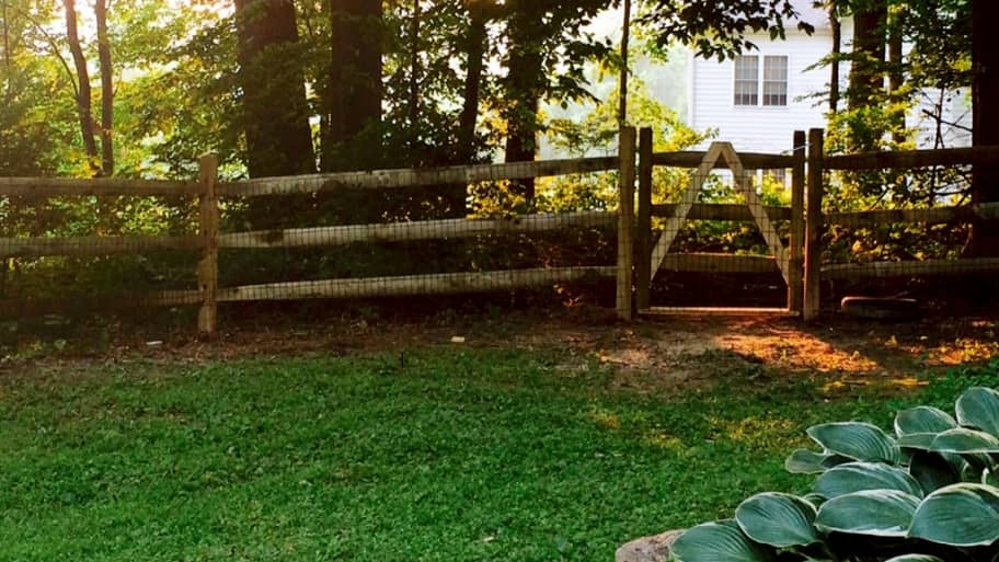 fence between yards