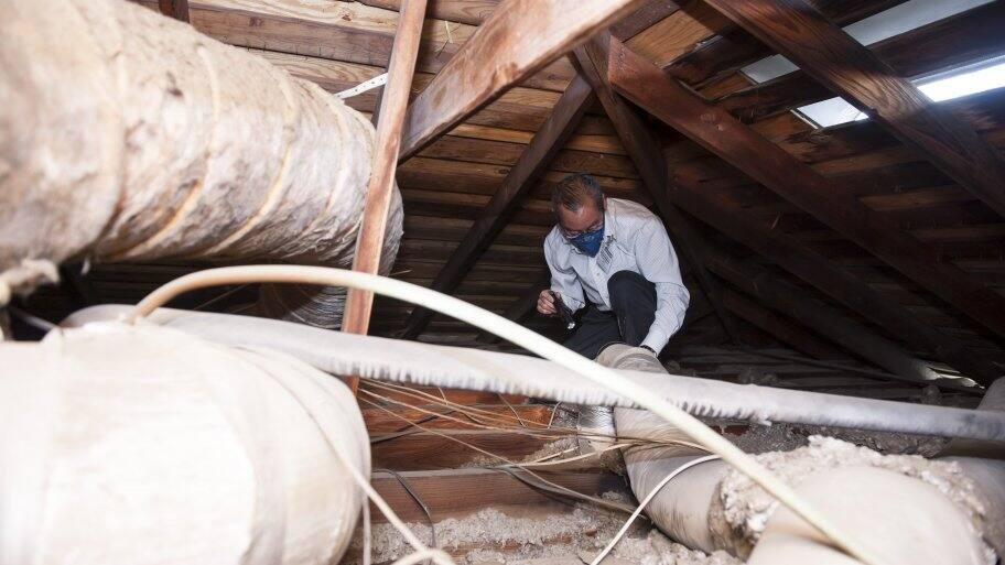 Home inspector in attic