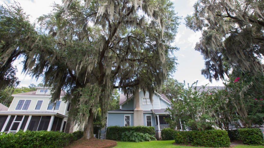 Large oak trees with Spanish moss by homes in Savanah, Georgia