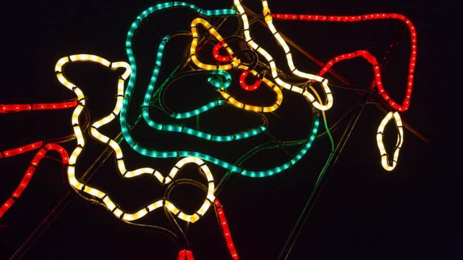 Grinch christmas lights