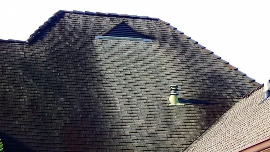 black discoloration on asphalt shingle roof