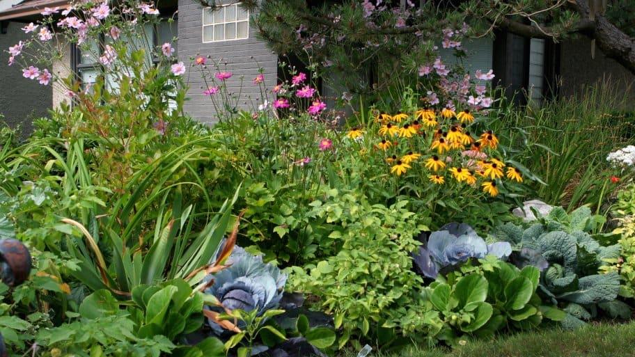 Planning A Garden Angie S List
