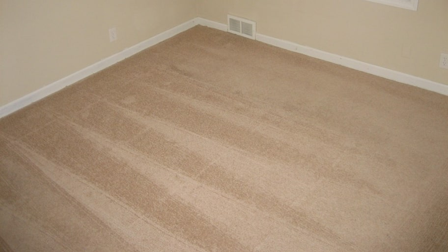 how to clean carpet after a flood angie s list