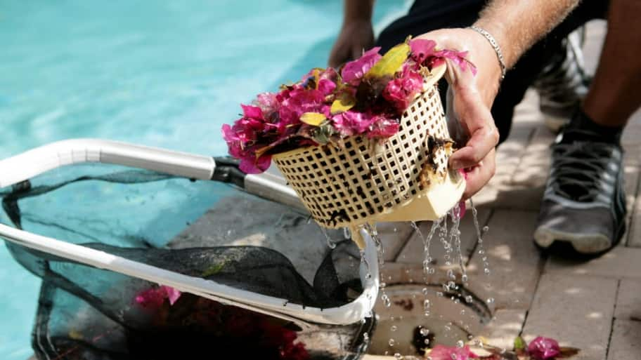 man empties the skimmer basket at a swimming pool.