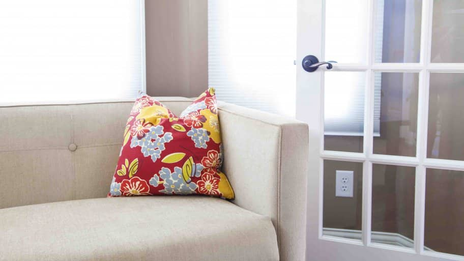 Couch With Throw Pillow