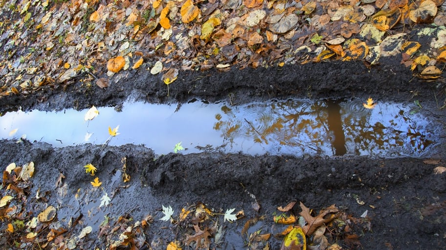 How To Solve Yard Drainage Problems Angie S List