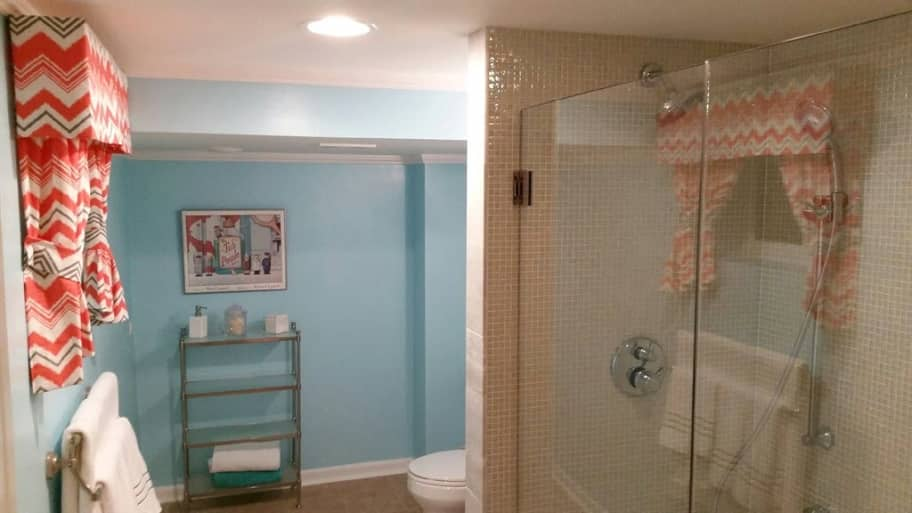 Marvelous Basement Bathroom