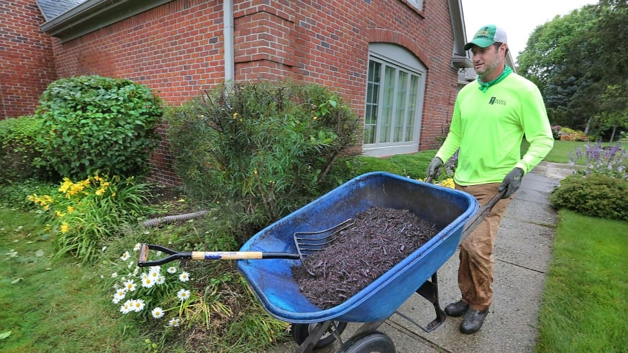 Mulch Comes In A Variety Of Colors Which Can Making Choosing The Right One For Your Yard Difficult Photo By Frank Eh