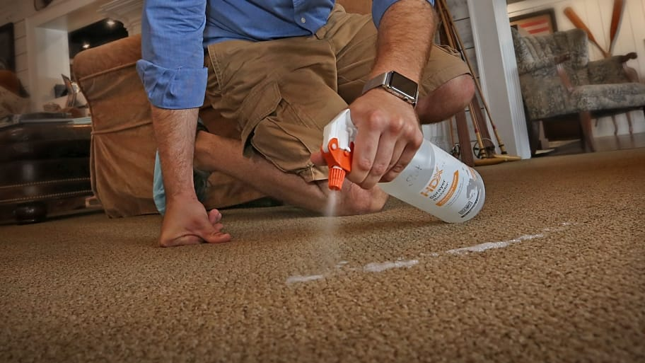 man spraying cleaner on carpet
