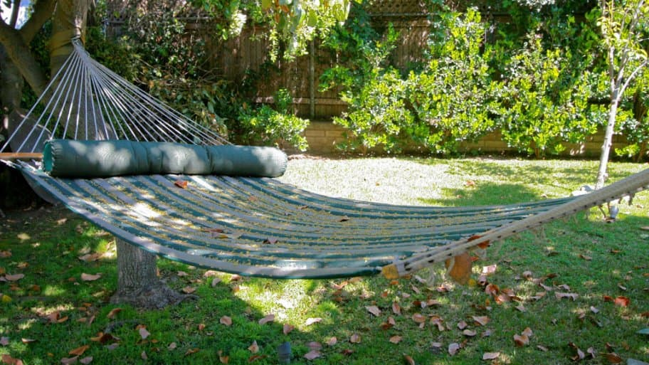 A backyard hammock