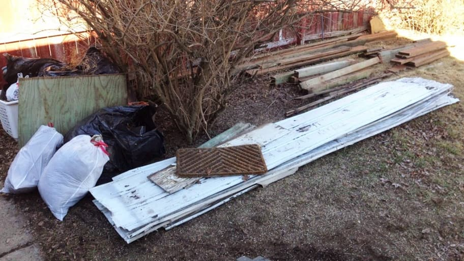 A pile of yard debris