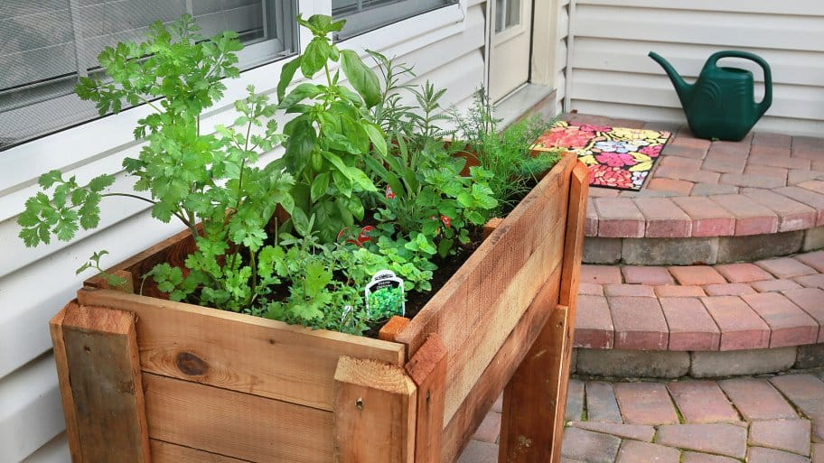 how to grow a big garden in a small space