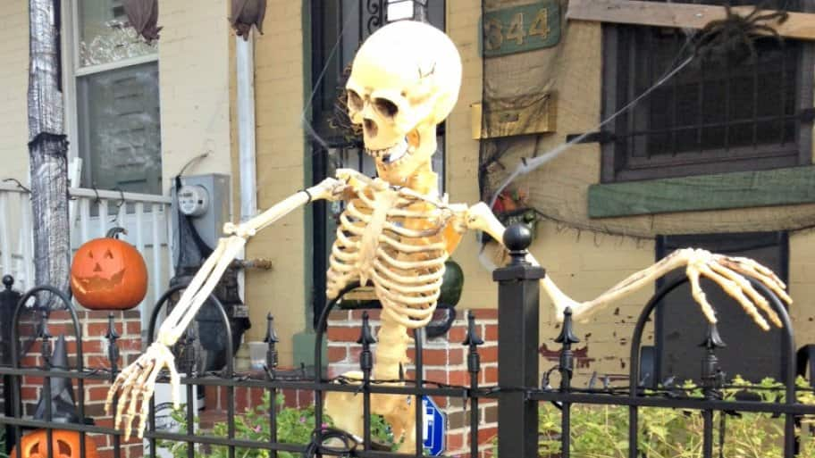 dc_skeleton
