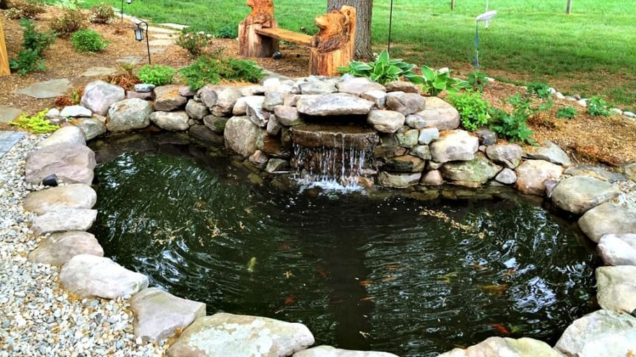 koi pond backyard