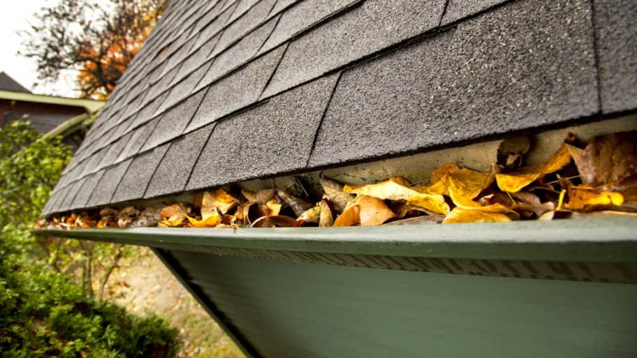 Pros and cons of diy gutter guards angies list gutter filled with fallen leaves solutioingenieria Choice Image
