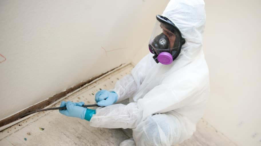 mold remediation contractor removes baseboards