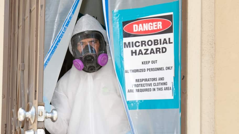 How To Prevent Mold From Infesting Your Home