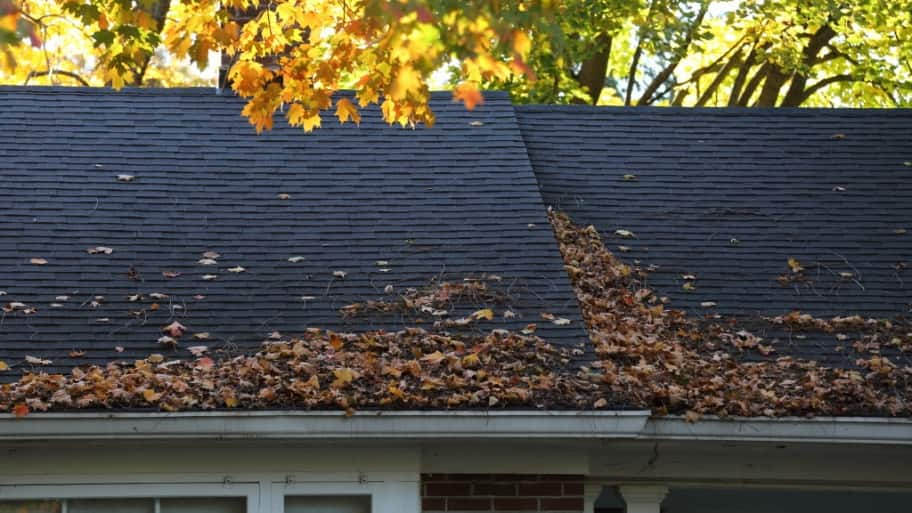 Rooftop with gutters filled with leaves