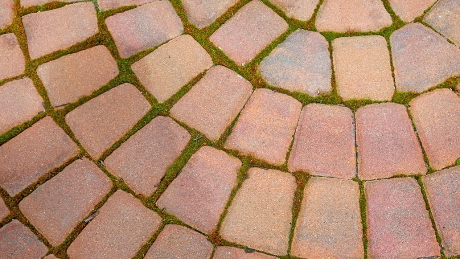 close up shot of a circular designed paver patio. Different patios will  have different prices ... - How Much Does It Cost To Install A Patio? Angie's List