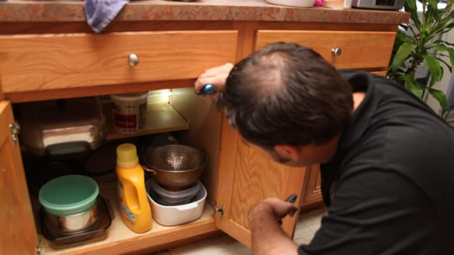man inspecting kitchen for roaches (Photo by Photo by John Zawacki  )