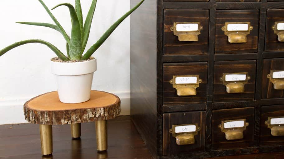 DIY plant stand with aloe plant