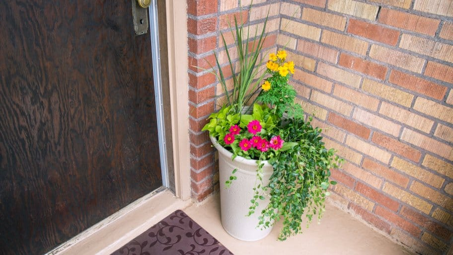 garden planter on porch