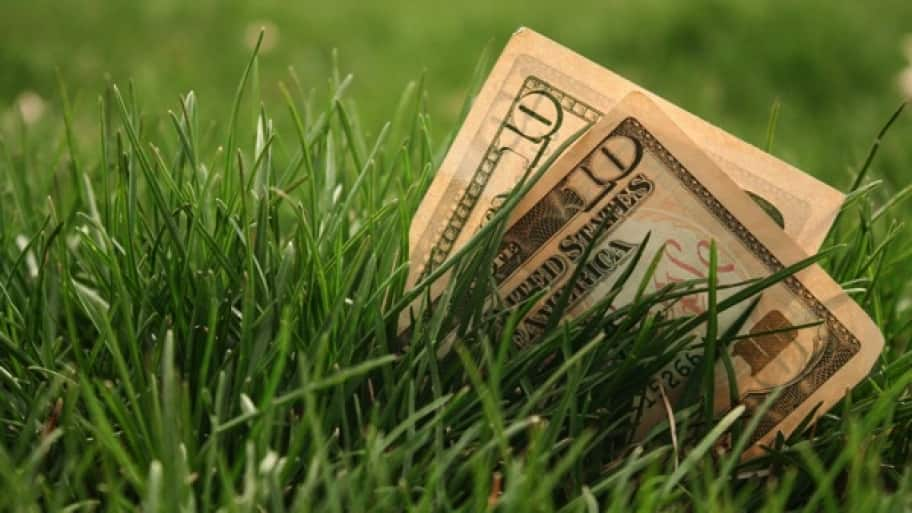 money sitting in grass