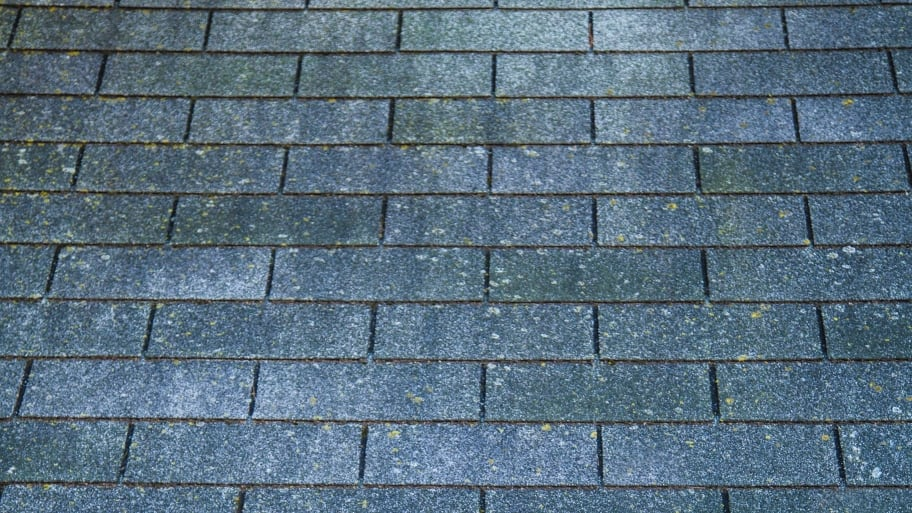 asphalt shingle roofline