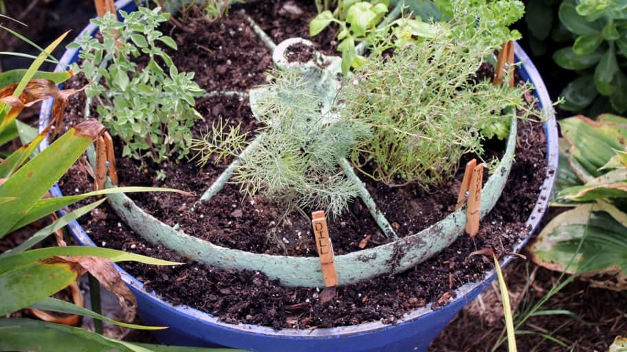 rustic wheel DIY herb garden in pot