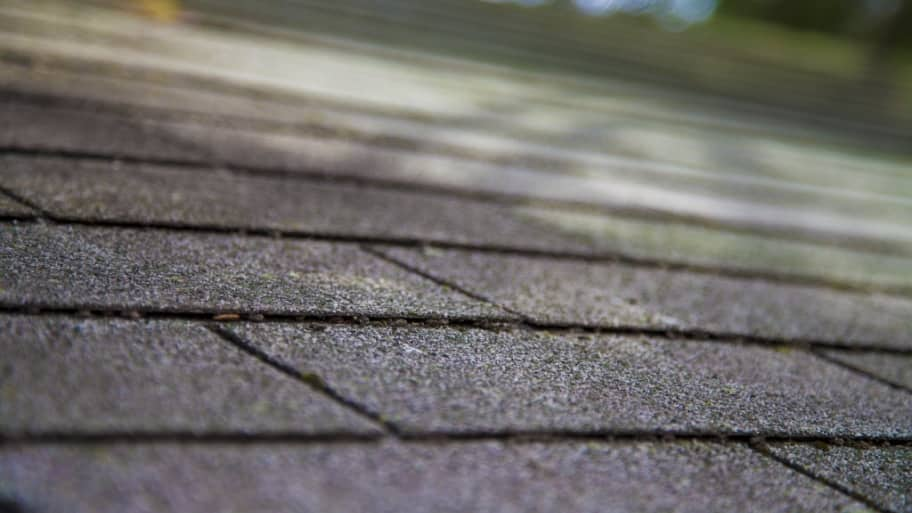 What Can I Do to Maintain My Roof – Mold On Roof Shingles