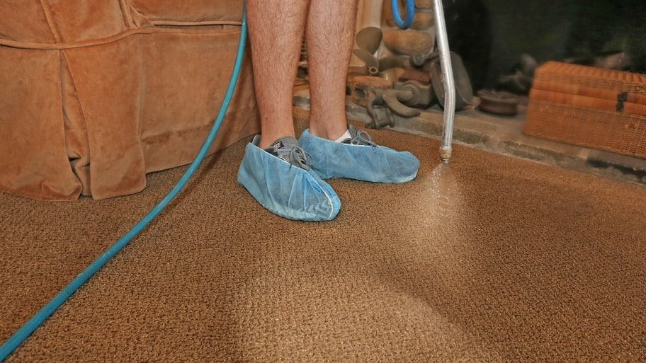 7 Tips To Ensure Quality Carpet Cleaning Angie S List