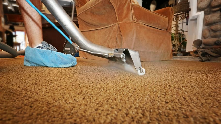 Carpet Steam Cleaning Facts
