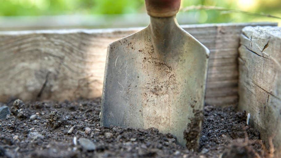 spade in vegetable garden soil