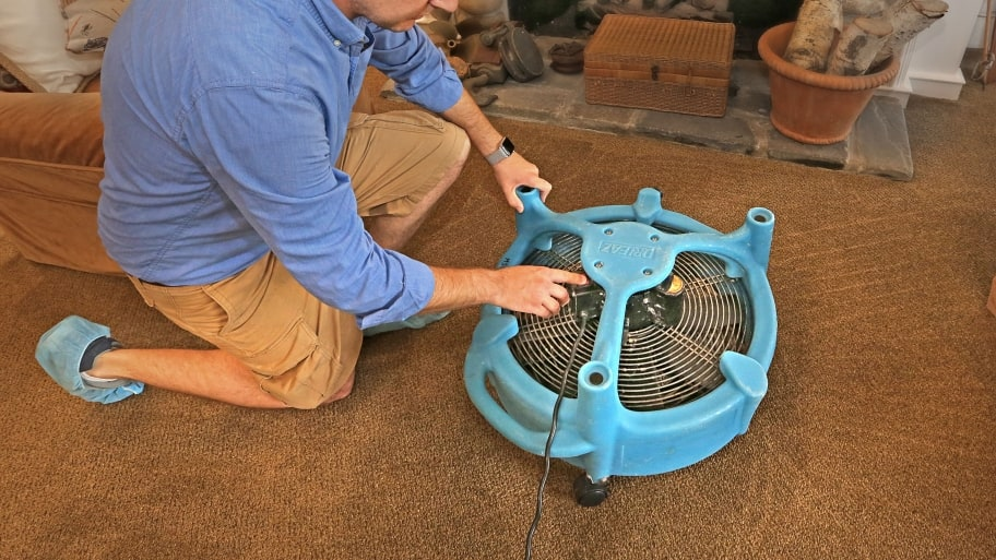 Carpet Cleaning Services: An Overview of Cleaning Options ...