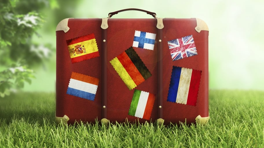 suitcase with foreign country flags