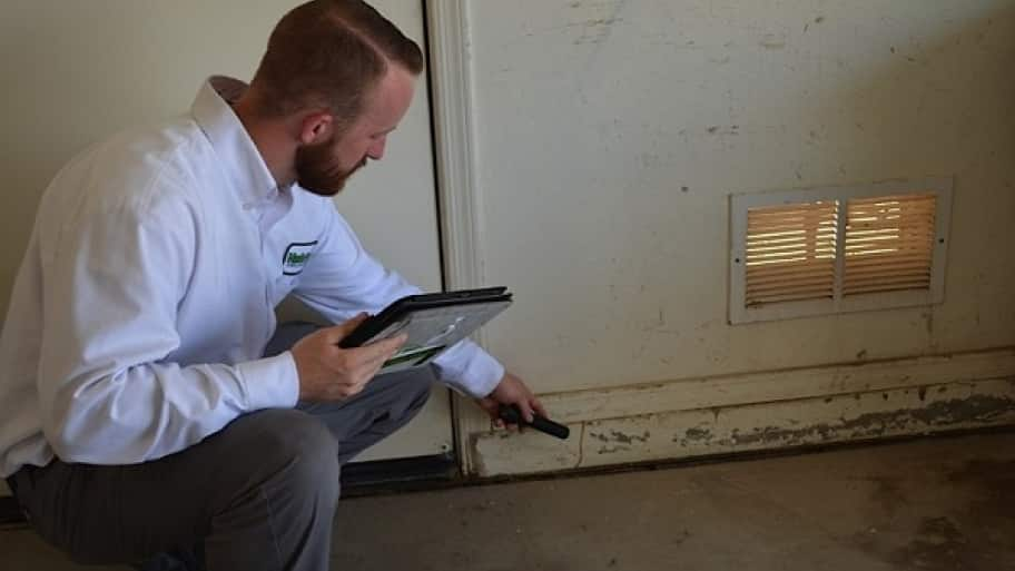 Man from MasterTech Pest Solutions looks for termites (Photo by MasterTech Pest Solutions)