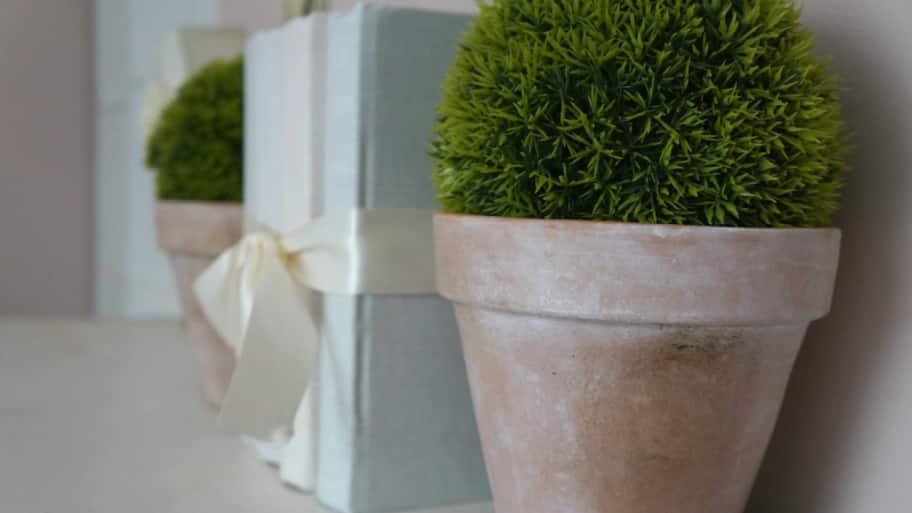 Rustic terracotta pots as bookends