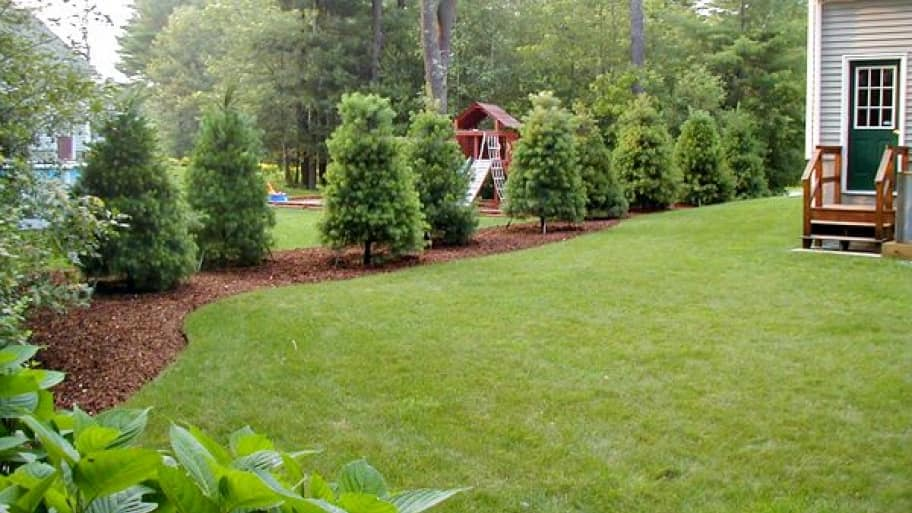Landscaping Ideas To Help Your Homes Curb Appeal Angies List