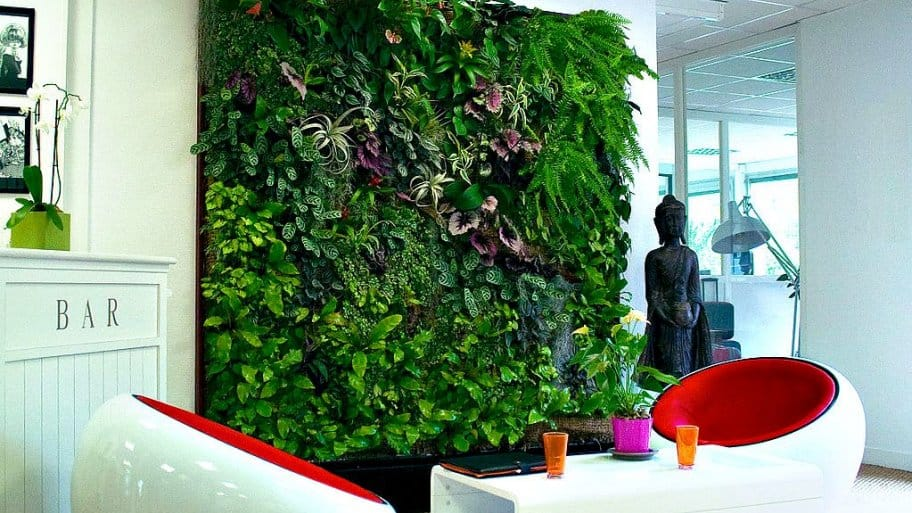 living wall indoor