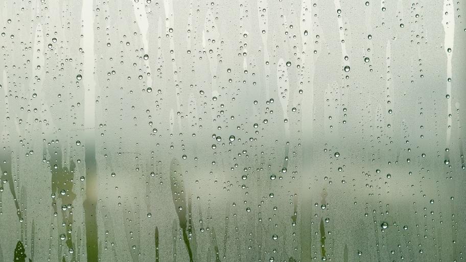 foggy window condensation