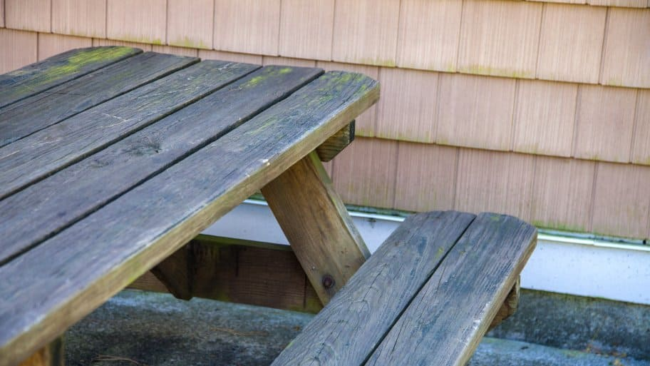 Moss and black stains on wood, siding or concrete patios can be cleaned without residual damage by using low-powered pressure washing, also known as a soft wash. (Photo by Katelin Kinney)
