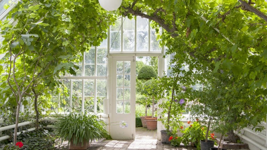10 Great Greenhouse Ideas For Your Yard Angie S List