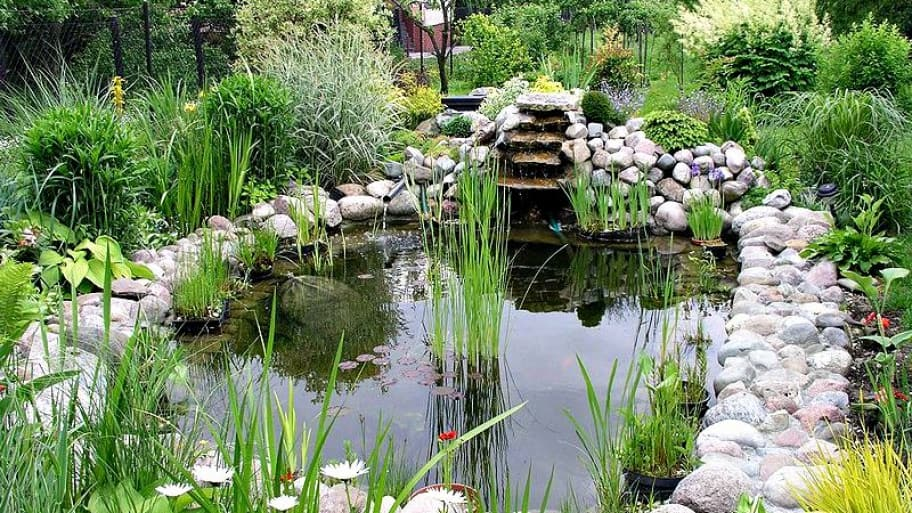 5 water feature ideas for your landscape design angie 39 s list for Setting up a garden pond